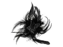 Haarschmuck - Glamour