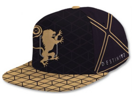 Destiny - Snapback Purple Titan