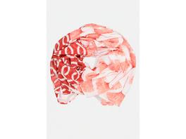 Gina Laura Schal, Gingko-Blattmuster, grafische Linien